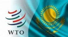 ЦГИ «Берлек-Единство»: Переговоры с ВТО завершились победой Казахстана – внутренний рынок под защитой
