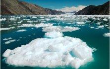ЦГИ «Берлек-Единство»: О проблеме таяния ледников в Кыргызстане 