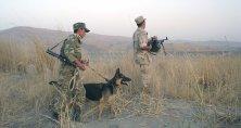 ЦГИ «Берлек-Единство»: Об эскалации напряженности на таджикско-афганской границе